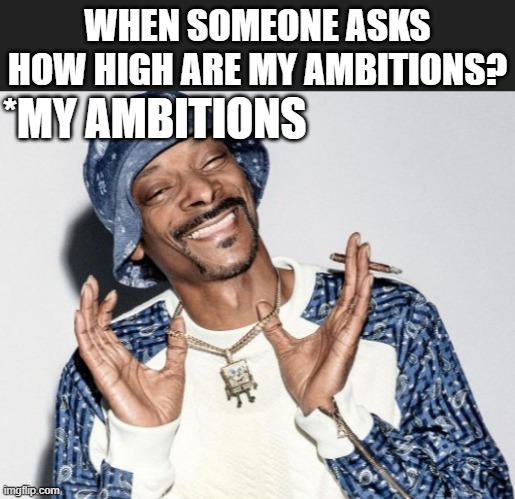 Snup dogg |  WHEN SOMEONE ASKS HOW HIGH ARE MY AMBITIONS? *MY AMBITIONS | image tagged in snoop dogg,too damn high | made w/ Imgflip meme maker
