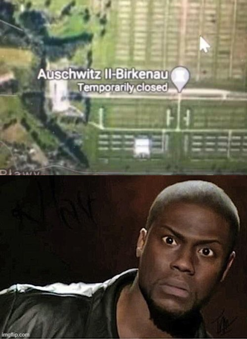 Temporarily?! | image tagged in memes,kevin hart,funny,auschwitz,hold up | made w/ Imgflip meme maker