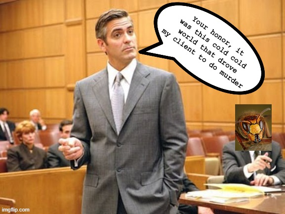 murder hornet lawyers be like |  Your honor, it was this cold cold world that drove my client to do murder | image tagged in lawyer lawsuits,murder hornet,guilty,defense,baby it's cold outside | made w/ Imgflip meme maker