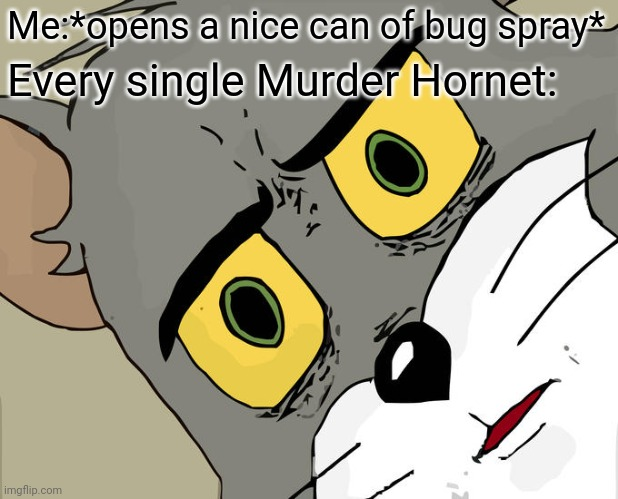 Unsettled Tom Meme |  Me:*opens a nice can of bug spray*; Every single Murder Hornet: | image tagged in memes,unsettled tom,murder hornet | made w/ Imgflip meme maker