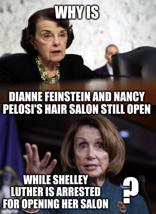 Image Tagged In Good Old Nancy Pelosi Dianne Feinstein Dimwit Imgflip