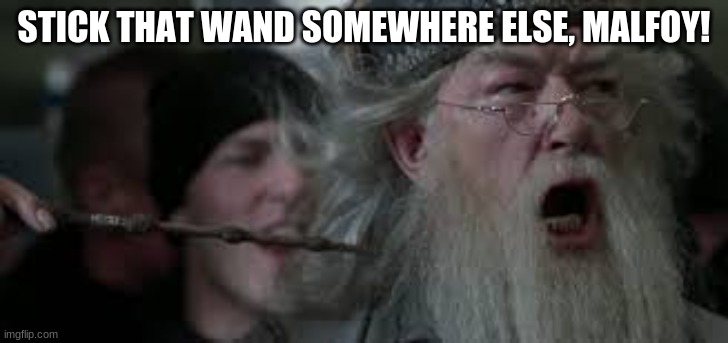Angry Dumbledore |  STICK THAT WAND SOMEWHERE ELSE, MALFOY! | image tagged in harry potter meme | made w/ Imgflip meme maker