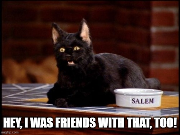 Salem | HEY, I WAS FRIENDS WITH THAT, TOO! | image tagged in salem | made w/ Imgflip meme maker