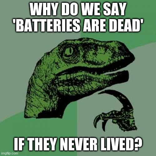 Philosoraptor Meme |  WHY DO WE SAY 'BATTERIES ARE DEAD'; IF THEY NEVER LIVED? | image tagged in memes,philosoraptor | made w/ Imgflip meme maker