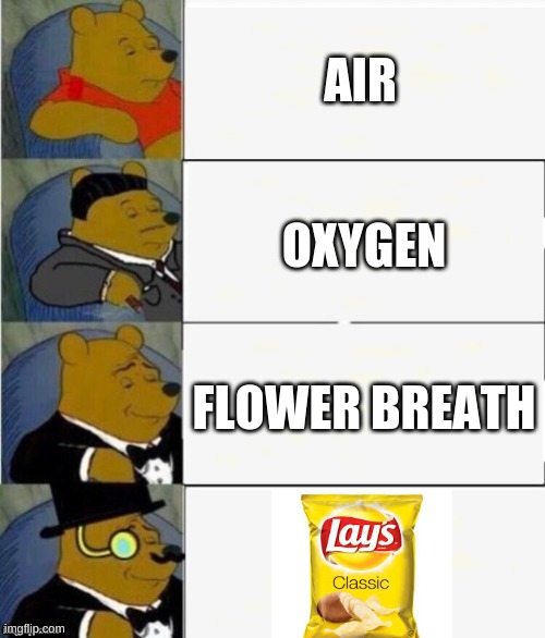 Tuxedo Winnie the Pooh 4 panel |  AIR; OXYGEN; FLOWER BREATH | image tagged in tuxedo winnie the pooh 4 panel | made w/ Imgflip meme maker