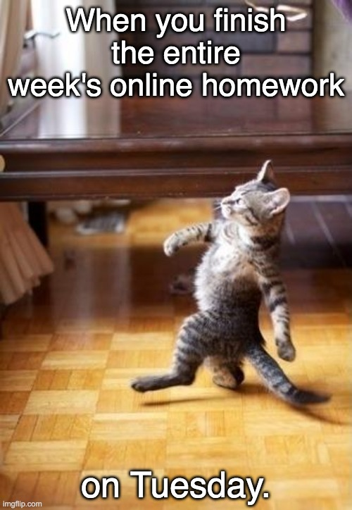 Cool Cat Stroll |  When you finish the entire week's online homework; on Tuesday. | image tagged in memes,cool cat stroll | made w/ Imgflip meme maker