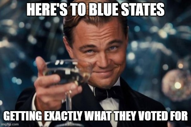 Leonardo Dicaprio Cheers |  HERE'S TO BLUE STATES; GETTING EXACTLY WHAT THEY VOTED FOR | image tagged in memes,leonardo dicaprio cheers | made w/ Imgflip meme maker