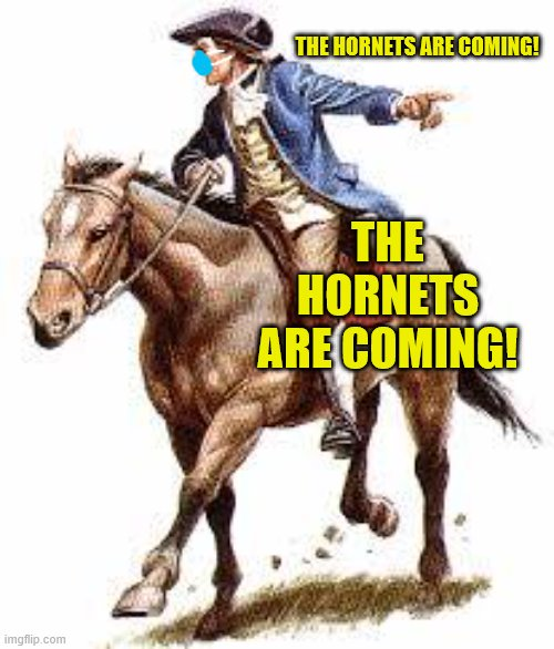 Paul Revere |  THE HORNETS ARE COMING! THE HORNETS ARE COMING! | image tagged in paul revere | made w/ Imgflip meme maker