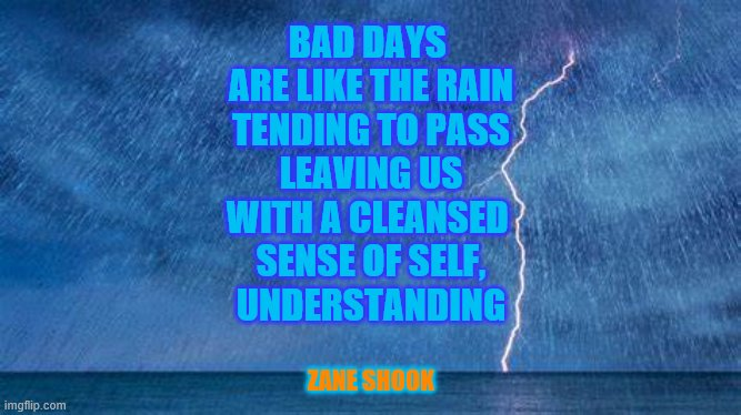 Reign of Rain |  BAD DAYS  ARE LIKE THE RAIN TENDING TO PASS LEAVING US WITH A CLEANSED  SENSE OF SELF, UNDERSTANDING; ZANE SHOOK | image tagged in rain,pain | made w/ Imgflip meme maker