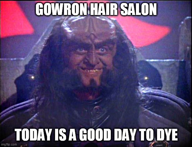 salon |  GOWRON HAIR SALON; TODAY IS A GOOD DAY TO DYE | image tagged in gowron is pleased enhanced | made w/ Imgflip meme maker