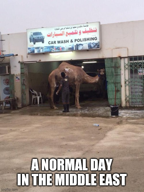 WILL IT IS HIS CAR |  A NORMAL DAY IN THE MIDDLE EAST | image tagged in car wash,wtf,middle east,camel | made w/ Imgflip meme maker