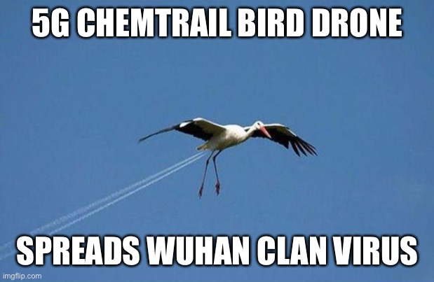 chemtrail bird |  5G CHEMTRAIL BIRD DRONE; SPREADS WUHAN CLAN VIRUS | image tagged in chemtrail,drone,5g,bird,wuhan,virus | made w/ Imgflip meme maker