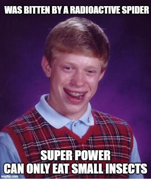 Bad Luck Brian Meme |  WAS BITTEN BY A RADIOACTIVE SPIDER; SUPER POWER CAN ONLY EAT SMALL INSECTS | image tagged in memes,bad luck brian,funny | made w/ Imgflip meme maker