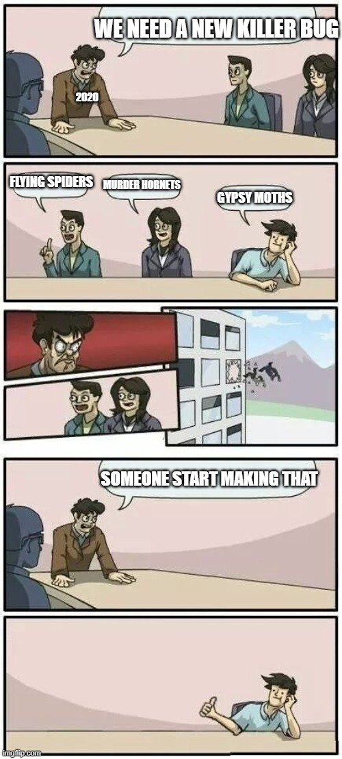 Boardroom Meeting Suggestion 2 |  WE NEED A NEW KILLER BUG; 2020; FLYING SPIDERS; MURDER HORNETS; GYPSY MOTHS; SOMEONE START MAKING THAT | image tagged in boardroom meeting suggestion 2 | made w/ Imgflip meme maker