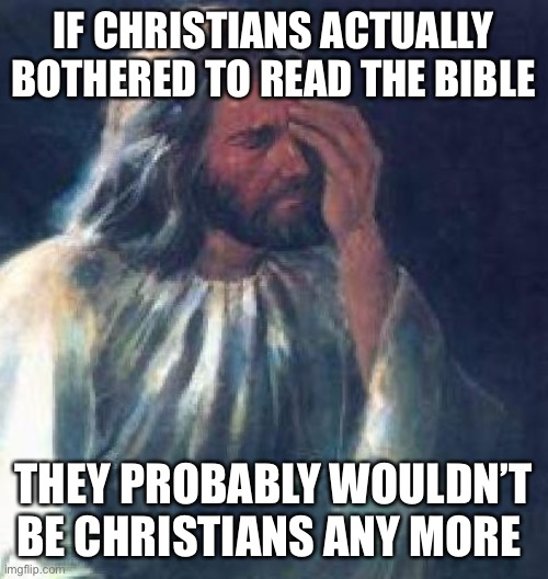 What is a Christan |  IF CHRISTIANS ACTUALLY BOTHERED TO READ THE BIBLE; THEY PROBABLY WOULDN'T BE CHRISTIANS ANY MORE | image tagged in jesus facepalm,christianity,jesus christ,atheist,atheism,fantasy | made w/ Imgflip meme maker