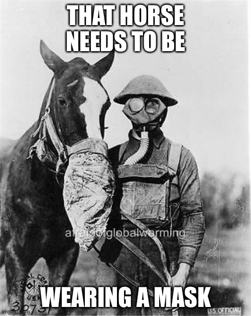 THAT HORSE NEEDS TO BE WEARING A MASK | made w/ Imgflip meme maker