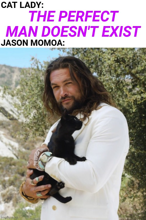 Jason Momoa Poses With Cats Makes Him the Perfect Man |  CAT LADY:; THE PERFECT MAN DOESN'T EXIST; JASON MOMOA: | image tagged in cats,sexy,perfection,aquaman,jason momoa,meme | made w/ Imgflip meme maker