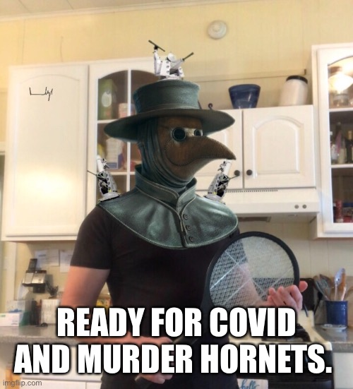 Ready |  READY FOR COVID AND MURDER HORNETS. | image tagged in covid-19,murder hornet,murder hornets,coronavirus | made w/ Imgflip meme maker