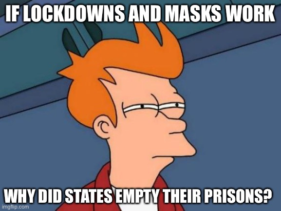 Things that make you go hmmm... |  IF LOCKDOWNS AND MASKS WORK; WHY DID STATES EMPTY THEIR PRISONS? | image tagged in coronavirus,quarantine,hoax,ConservativeMemes | made w/ Imgflip meme maker