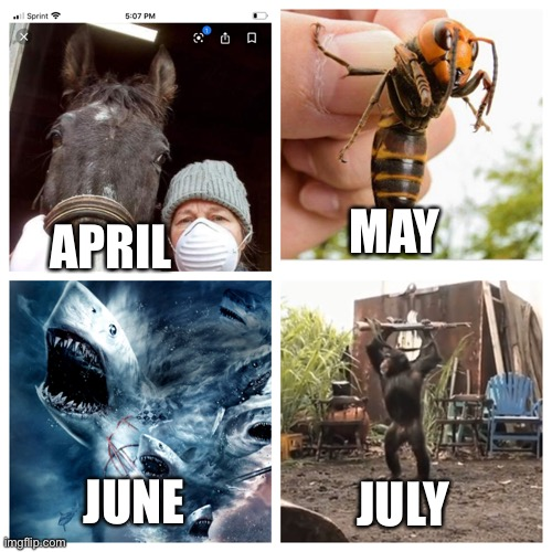 2020 be like |  MAY; APRIL; JUNE; JULY | image tagged in covid-19,quarantine | made w/ Imgflip meme maker