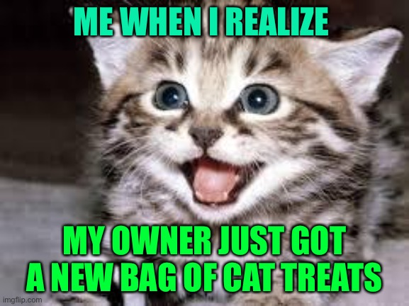 happy cat |  ME WHEN I REALIZE; MY OWNER JUST GOT A NEW BAG OF CAT TREATS | image tagged in happy cat | made w/ Imgflip meme maker
