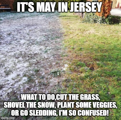 Snow In May Memes Gifs Imgflip