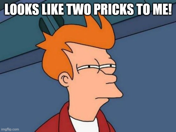 LOOKS LIKE TWO PRICKS TO ME! | image tagged in memes,futurama fry | made w/ Imgflip meme maker