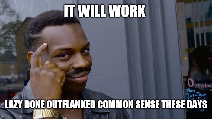 IT WILL WORK LAZY DONE OUTFLANKED COMMON SENSE THESE DAYS | image tagged in memes,roll safe think about it | made w/ Imgflip meme maker
