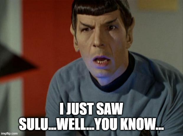 Not For Vulcan Eyes |  I JUST SAW SULU...WELL...YOU KNOW... | image tagged in shocked spock | made w/ Imgflip meme maker
