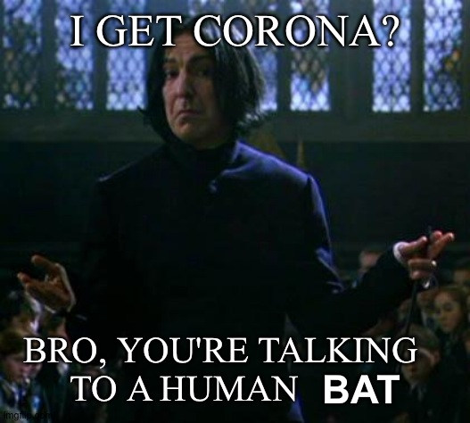Snape shrugs at Corona |  I GET CORONA? BRO, YOU'RE TALKING TO A HUMAN; BAT | image tagged in harry potter meme,corona,snape,shrug,lol | made w/ Imgflip meme maker