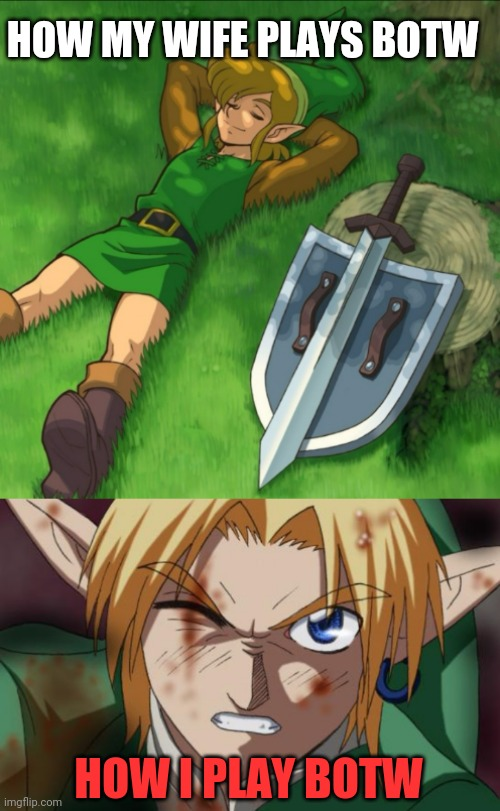 The Legend Of Zelda Breath Of The Wild Memes Gifs Imgflip
