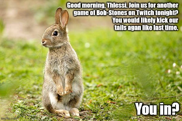 Insprired by Watership Down |  Good morning, Thlessi. Join us for another  game of Bob-Stones on Twitch tonight?   You would likely kick our  tails agan like last time. You in? | image tagged in rabbit,humor,games,twitch | made w/ Imgflip meme maker