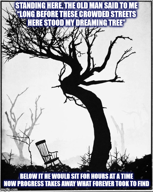 "DMB The Dreaming Tree (photo by Virna Haffer) |  STANDING HERE, THE OLD MAN SAID TO ME ""LONG BEFORE THESE CROWDED STREETS HERE STOOD MY DREAMING TREE""; BELOW IT HE WOULD SIT FOR HOURS AT A TIME NOW PROGRESS TAKES AWAY WHAT FOREVER TOOK TO FIND 