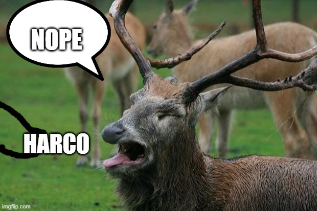 Disgusted Deer |  NOPE; HARCO | image tagged in disgusted deer | made w/ Imgflip meme maker