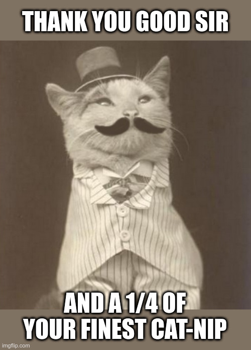 Cat-nip Dispensary |  THANK YOU GOOD SIR; AND A 1/4 OF YOUR FINEST CAT-NIP | image tagged in cats,catnip,dispensary,black and white,funny cats | made w/ Imgflip meme maker