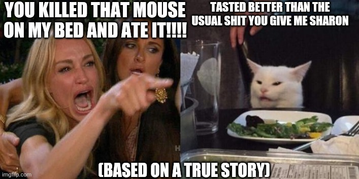 Woman Screaming at Cat |  YOU KILLED THAT MOUSE ON MY BED AND ATE IT!!!! TASTED BETTER THAN THE USUAL SHIT YOU GIVE ME SHARON; (BASED ON A TRUE STORY) | image tagged in woman screaming at cat | made w/ Imgflip meme maker
