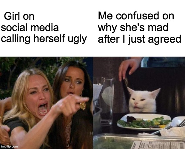 woman yelling at cat |  Girl on social media calling herself ugly; Me confused on why she's mad after I just agreed | image tagged in meme,rainbow,batman,dolphin,mike wazowski,oh wow are you actually reading these tags | made w/ Imgflip meme maker