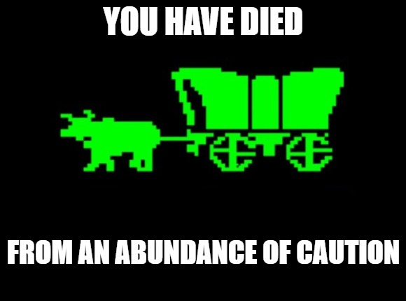 Oregon trail |  YOU HAVE DIED; FROM AN ABUNDANCE OF CAUTION | image tagged in oregon trail | made w/ Imgflip meme maker