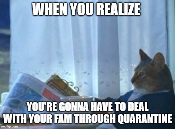 I Should Buy A Boat Cat |  WHEN YOU REALIZE; YOU'RE GONNA HAVE TO DEAL WITH YOUR FAM THROUGH QUARANTINE | image tagged in memes,i should buy a boat cat | made w/ Imgflip meme maker