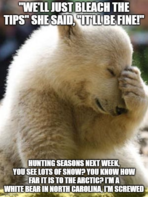 "Facepalm Bear |  ""WE'LL JUST BLEACH THE TIPS"" SHE SAID, ""IT'LL BE FINE!""; HUNTING SEASONS NEXT WEEK, YOU SEE LOTS OF SNOW? YOU KNOW HOW FAR IT IS TO THE ARCTIC? I'M A WHITE BEAR IN NORTH CAROLINA, I'M SCREWED 