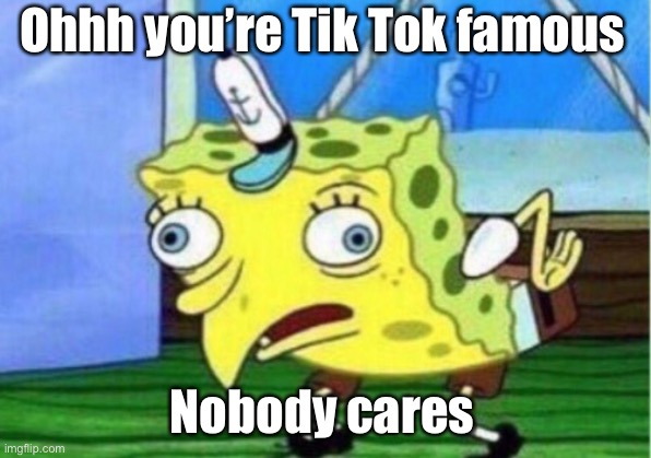 Ohhh you're Tik Tok famous Nobody cares | image tagged in memes,mocking spongebob | made w/ Imgflip meme maker