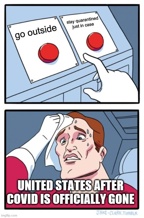 Two Buttons |  stay quarantined just in case; go outside; UNITED STATES AFTER COVID IS OFFICIALLY GONE | image tagged in memes,two buttons | made w/ Imgflip meme maker