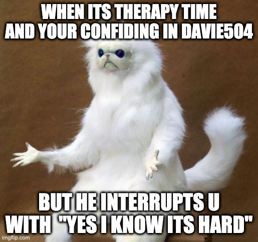 "memes |  WHEN ITS THERAPY TIME AND YOUR CONFIDING IN DAVIE504; BUT HE INTERRUPTS U WITH  ""YES I KNOW ITS HARD"" 