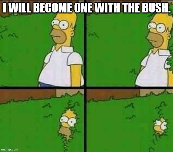 Becomeing one with the bush. |  I WILL BECOME ONE WITH THE BUSH. | image tagged in homer simpson nope | made w/ Imgflip meme maker