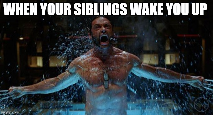 WOLVERINE |  WHEN YOUR SIBLINGS WAKE YOU UP | image tagged in wolverine | made w/ Imgflip meme maker