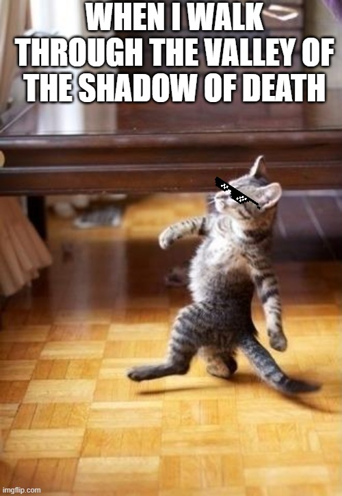 Cool Cat Stroll |  WHEN I WALK THROUGH THE VALLEY OF THE SHADOW OF DEATH | image tagged in funny,fun,cats,cat,cool,walking | made w/ Imgflip meme maker