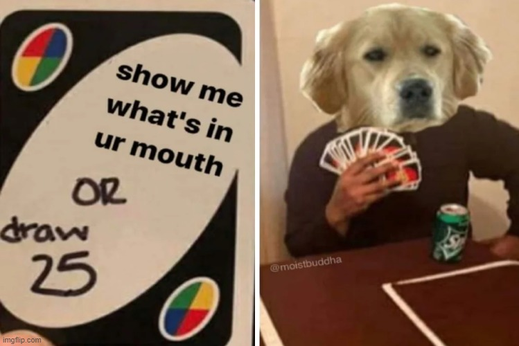 Draw 25 | image tagged in uno draw 25 cards,memes,funny memes | made w/ Imgflip meme maker