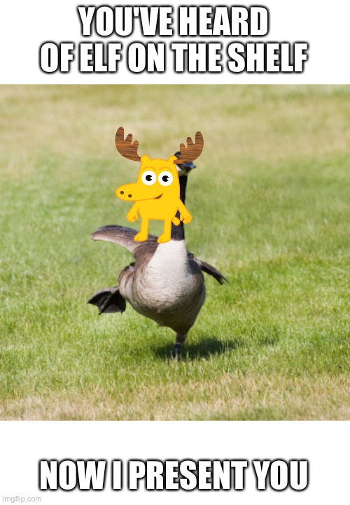 Moose on a Goose |  YOU'VE HEARD OF ELF ON THE SHELF; NOW I PRESENT YOU | image tagged in canada goose | made w/ Imgflip meme maker