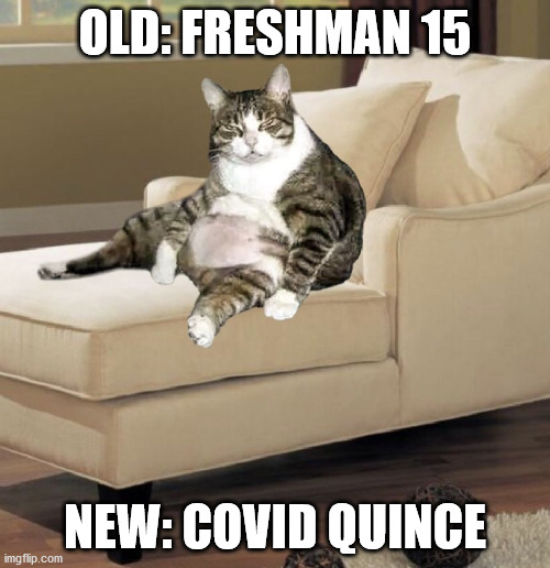 OLD: FRESHMAN 15; NEW: COVID QUINCE | image tagged in covid 19 weight gain | made w/ Imgflip meme maker