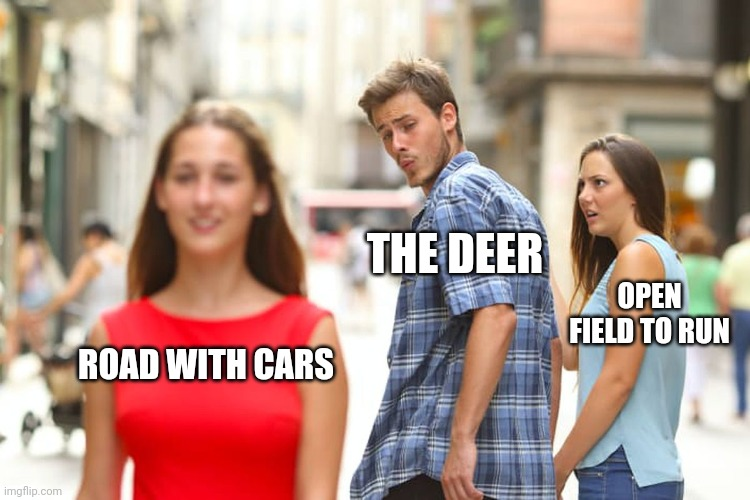 Distracted Boyfriend |  THE DEER; OPEN FIELD TO RUN; ROAD WITH CARS | image tagged in memes,distracted boyfriend | made w/ Imgflip meme maker